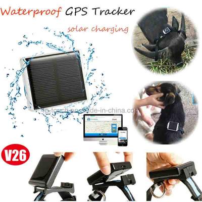 Animal GPS Tracker with Solar Power Charging (V26)
