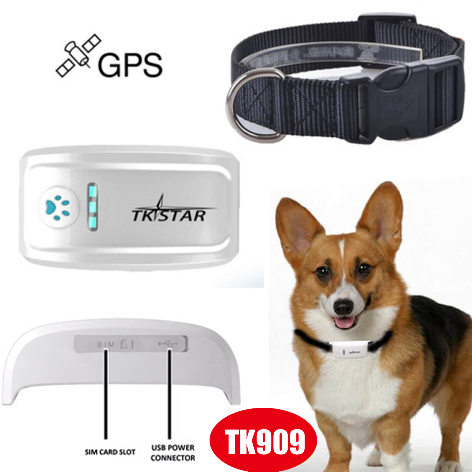 Long working hours Pet GPS Tracker with Real Time Tracking Tk909